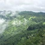 Nagarkot (Népal) – la tête dans les nuages