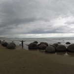 Moeraki Boulders et Dunedin (Nouvelle Zélande)