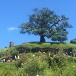 Hobbiton Movie Set (Nouvelle Zélande) : un rêve devenu réalité
