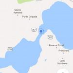 Trajet : Punta Arenas (Chili) à Ushuaia (Argentine) en bus avec Bus-Sur : retour, avis