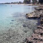 Playa Larga (Cuba) : plages de rêve et sable fin
