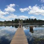 Siem Reap (Cambodge) : suite et fin de notre séjour au Cambodge