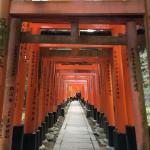 Carnet de voyage Kyoto (Japon) #2 : Museum of Traditional Crafts, Kyoto Botanical Garden, Fushimi Inari-taisha