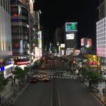 Carnet de voyage Tokyo (Japon) #2 : Ueno, Akihabara, Tour de Tokyo, Shibuya et Shinjuku