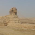 Jours 10 & 11 en Egypte : Musée du Caire, le Sphinx, les Pyramides de Gizeh et Saqqarah