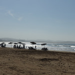 Essaouira (Maroc) #1 : Premières impressions