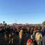 Environs d'Essaouira #2 : Visite du souk Had Draa (Maroc)