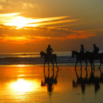 Roadtrip au Maroc : 3 jours à Essaouira (partie 3/3)