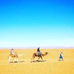 Digital Nomad : Bilan après 2,5 mois au Maroc (Marrakech, Essaouira, désert du Sahara)