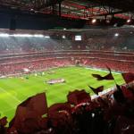Lisbonne (Portugal) #2 : Assister à un match de Benfica au Stade de Luz
