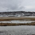 [Roadtrip en Islande] Jour 11 : Le Nord-Ouest de l'Islande