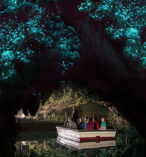 glowwormcaves