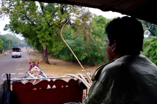 Carnets de voyage en Birmanie. Bobo, son prénom pour les touristes, conducteur de cariole à Bagan, déc. 2011.Photo Mathieu THOMASSET